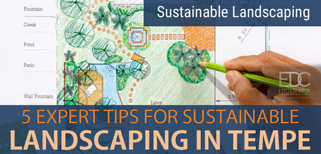 Sustainable Landscaping In Tempe